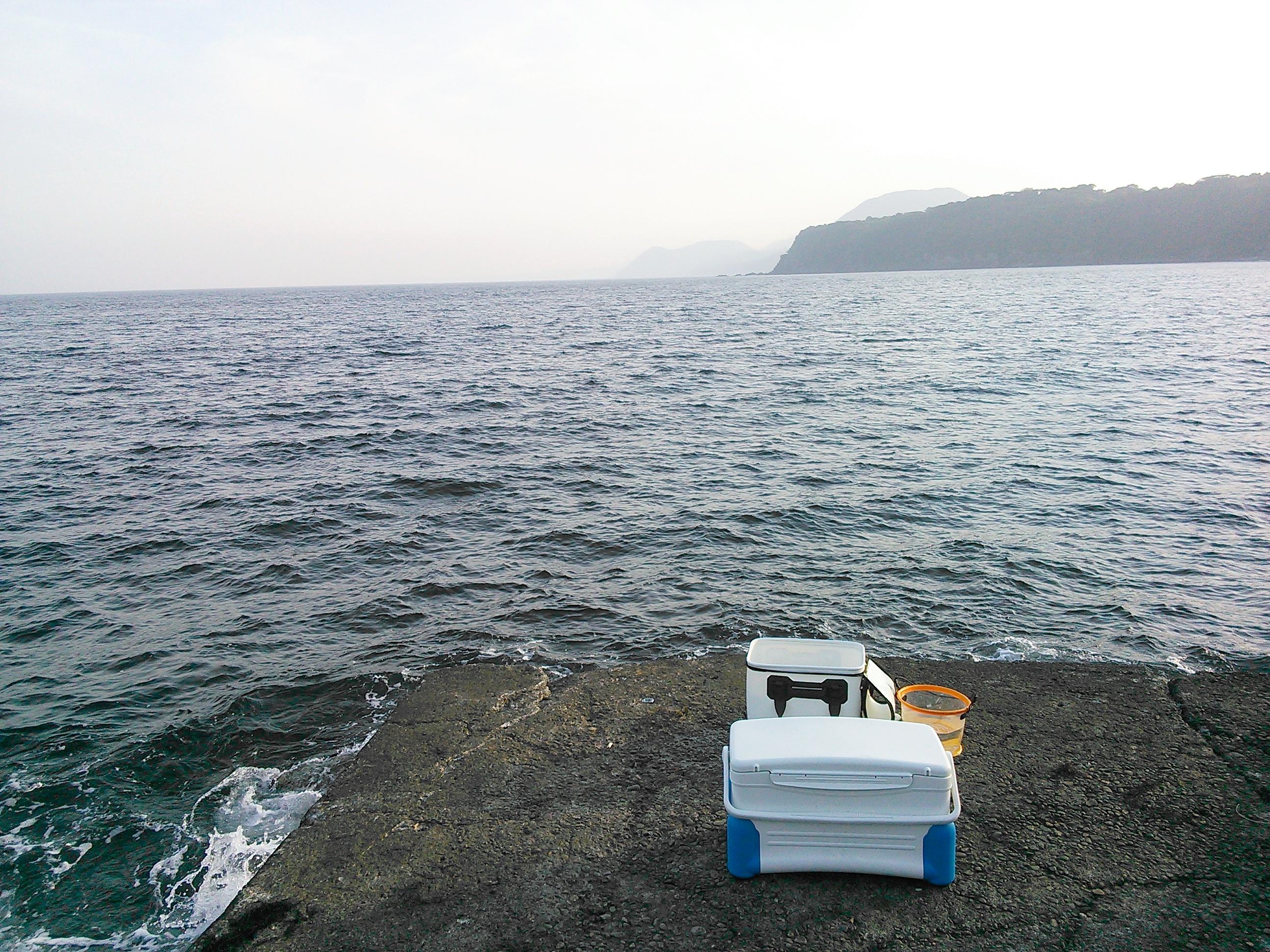 東伊豆・稲取の藤山の堤防