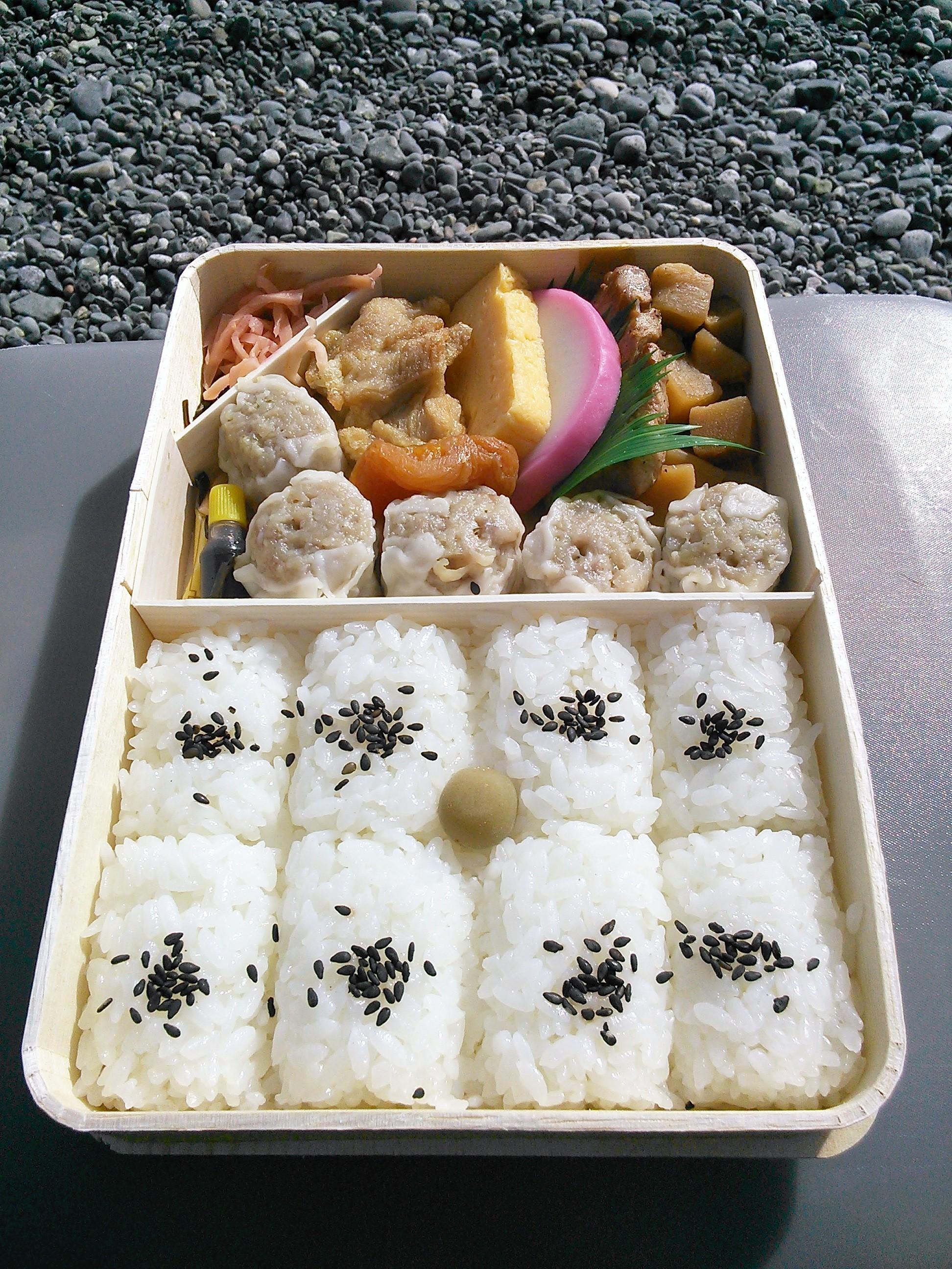 国府津海岸で崎陽軒のシウマイ弁当を食べる