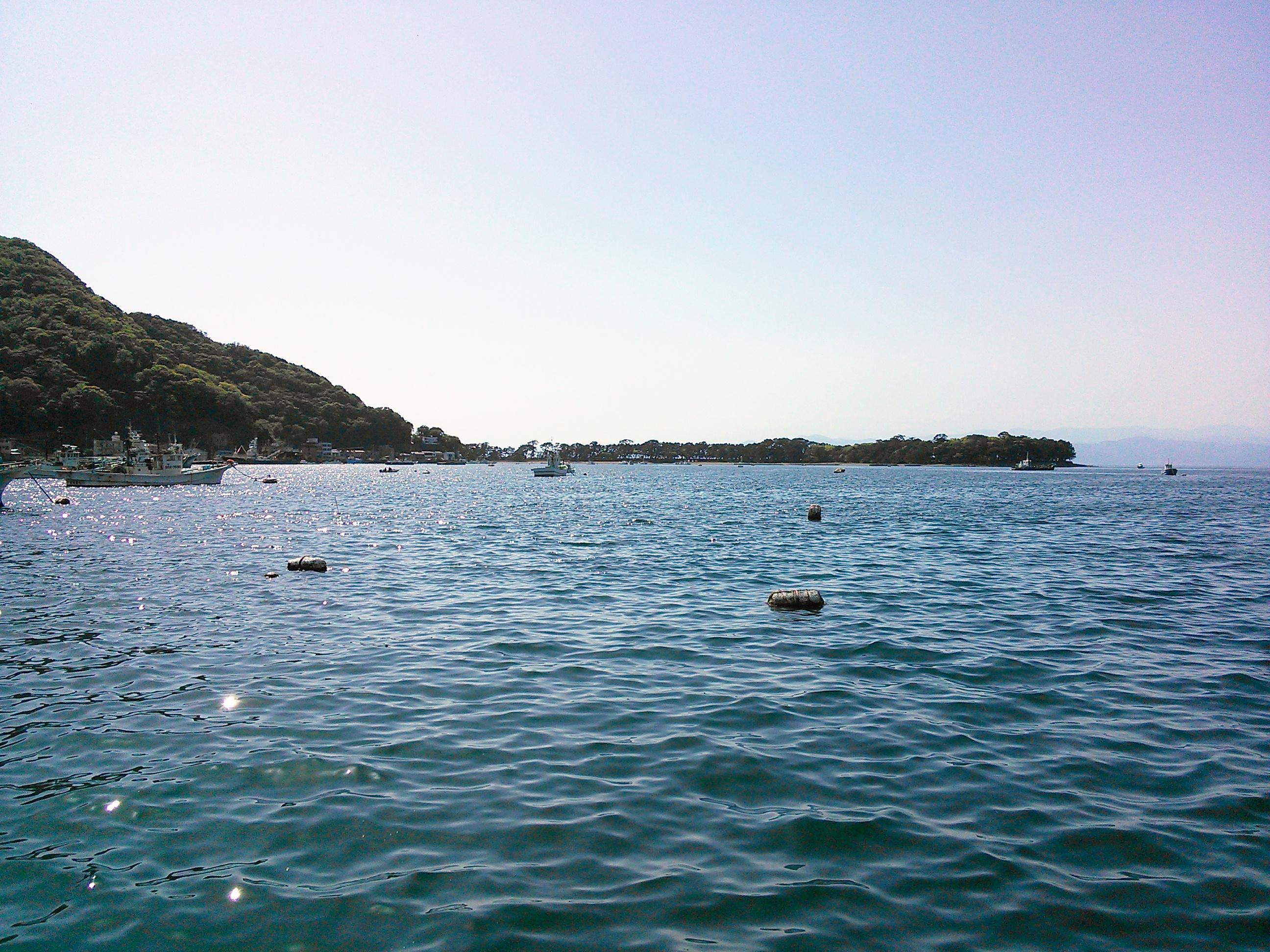 戸田港の海