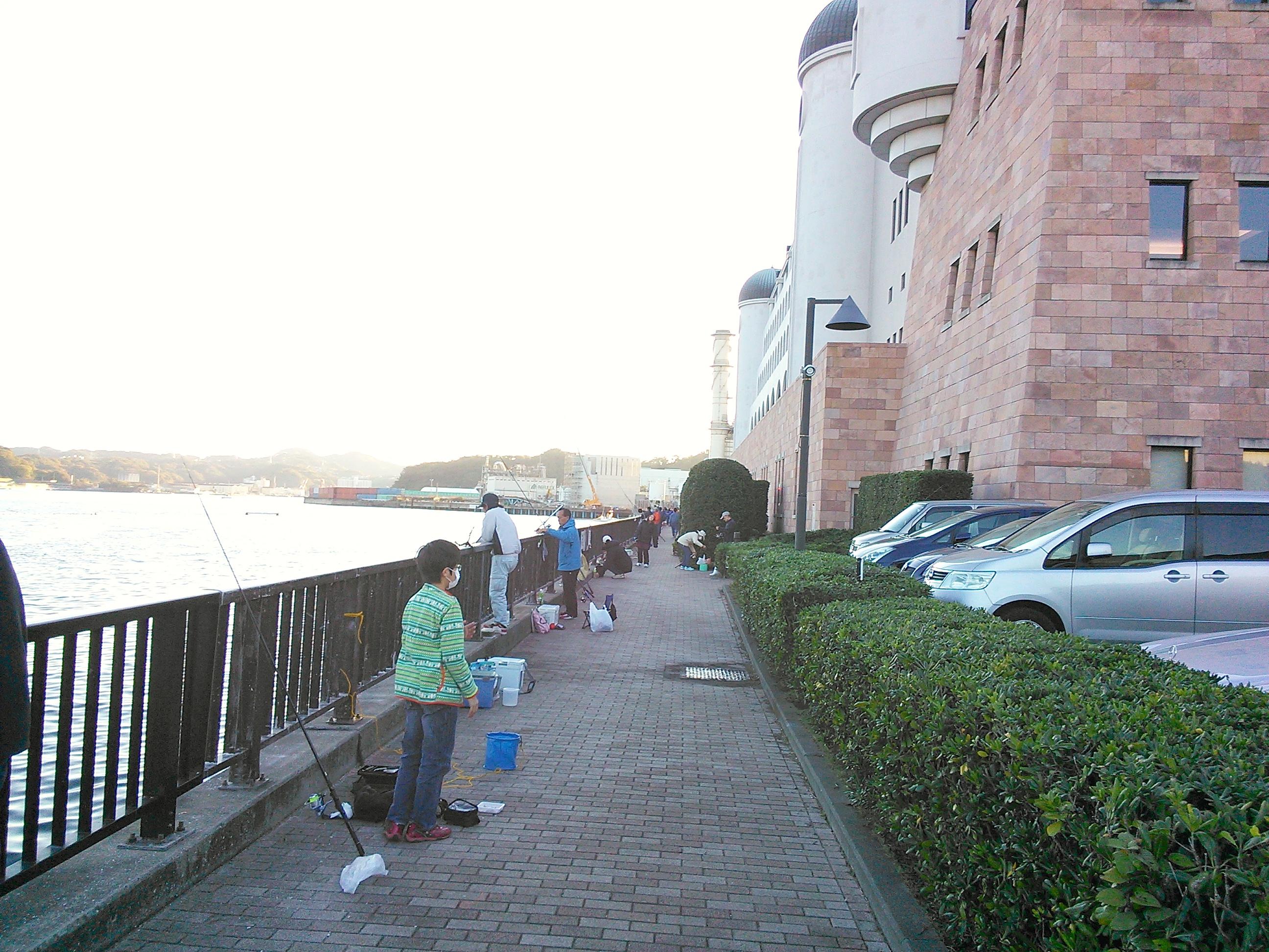横須賀・アイクル横護岸