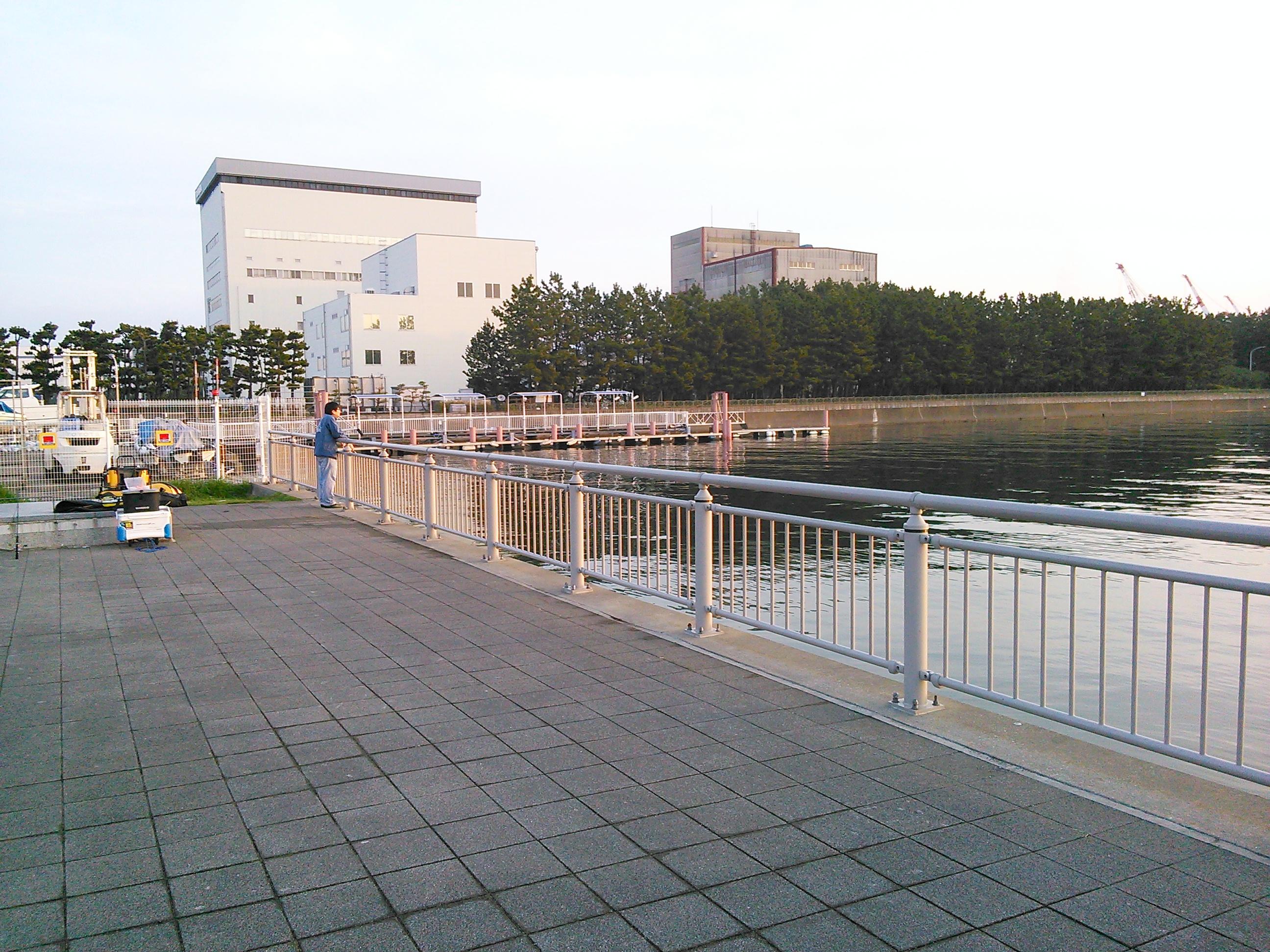 杉田臨海緑地でエギング