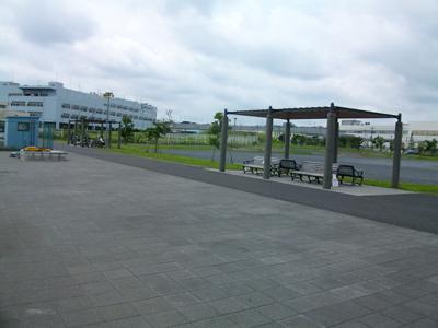 杉田臨海緑地の公園側の風景