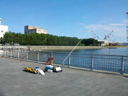 杉田臨海緑地での釣り座