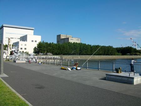 10月の杉田臨海緑地は釣客で賑わい
