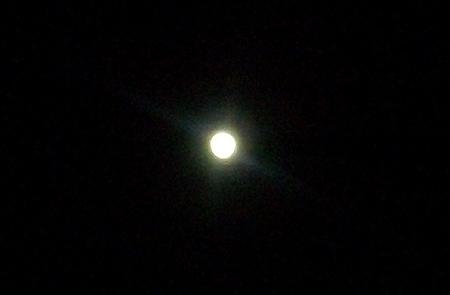 2013年12月15日、杉田臨海緑地は月明かりで眩しいくらいだった