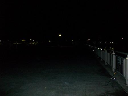 寒いせいかこの日の杉田臨海緑地で竿を出していたのはわたしだけ