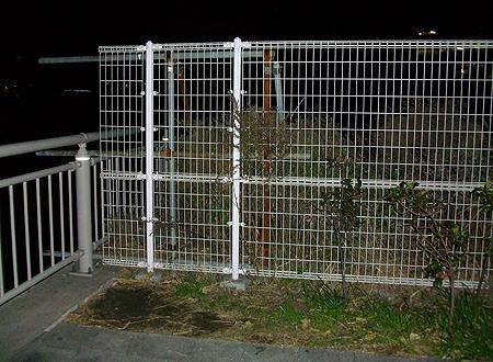 釣り座を構えたのは釣り場一番右奥のフェンス横