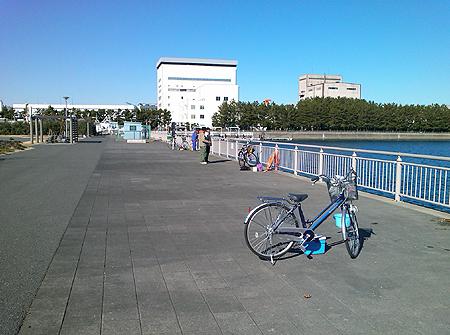 杉田臨海緑地