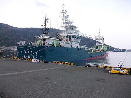 西伊豆・戸田港の新岸壁の釣り座