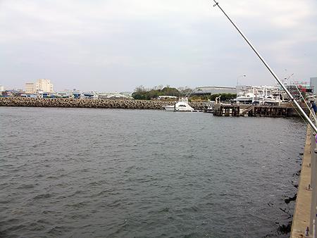 杉田臨海緑地の海