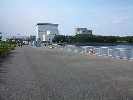 杉田臨海緑地の全景
