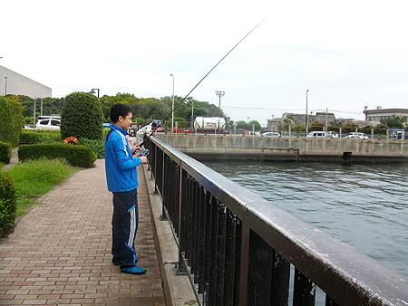 横須賀・アイクルの護岸でチョイ投げを楽しむオダ マルソウダ