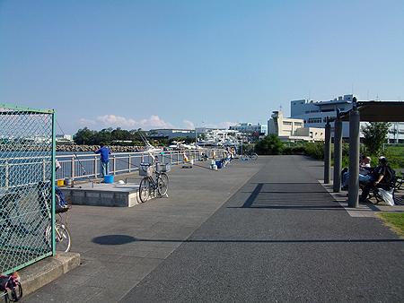 横浜磯子・杉田臨海緑地はかなりの賑わい