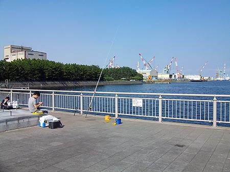 横浜磯子・杉田臨海緑地の釣り場風景