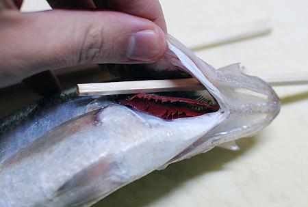 ワキヤハタの口から割り箸を通した手元のアップ