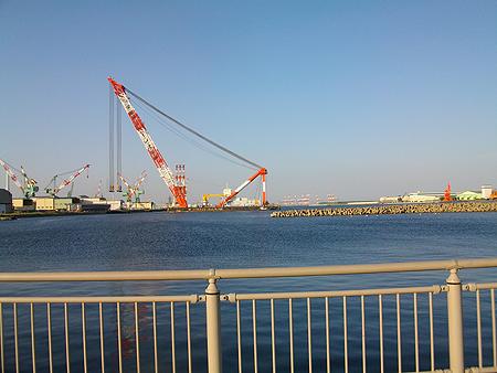 横浜磯子の杉田臨海緑地