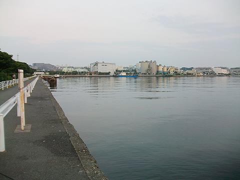 磯子の根岸港