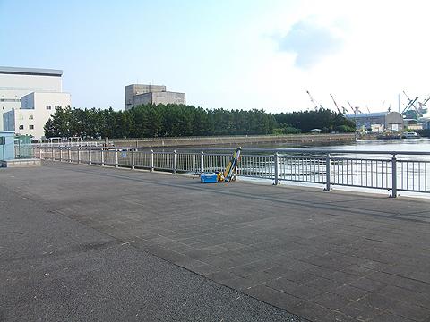 磯子の杉田臨海緑地