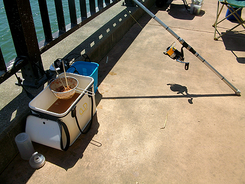 アイクル横護岸でのウキサビキ釣りのための釣り座
