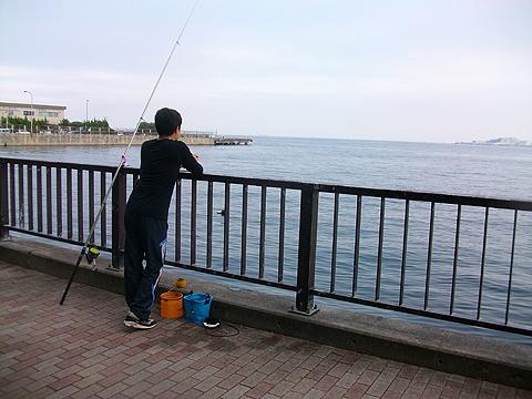 アイクル横護岸で釣り