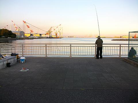 横浜磯子・杉田臨海緑地