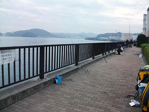 横須賀追浜・アイクル横護岸