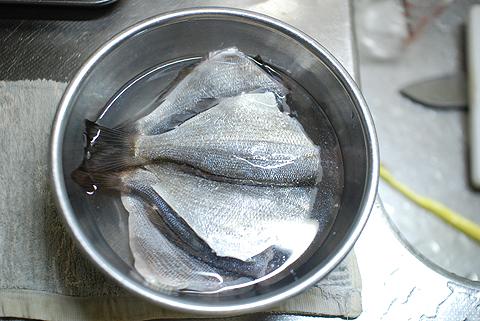 開いたウミタナゴを立て塩に漬ける