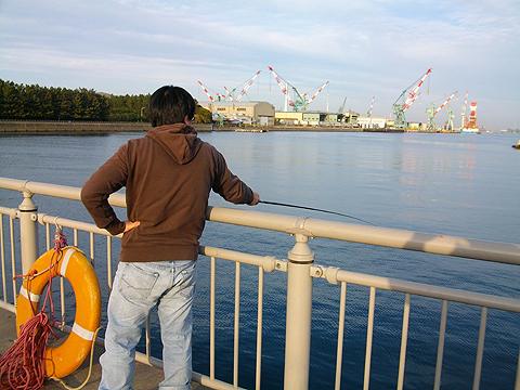杉田臨海緑地でノベ竿のミャク釣り