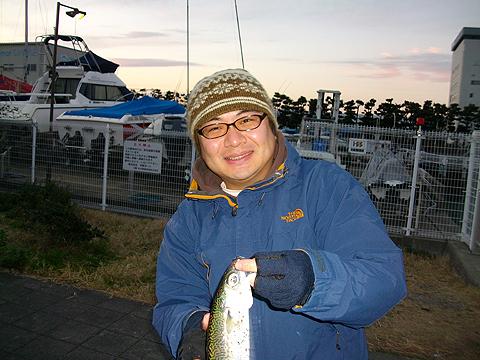 ノベ竿で釣った30cm級のゴマサバ