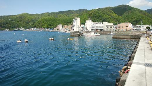 2017年5月4日の西伊豆・戸田港