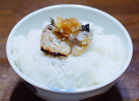 サワラの西京焼きは白飯最強の飯友